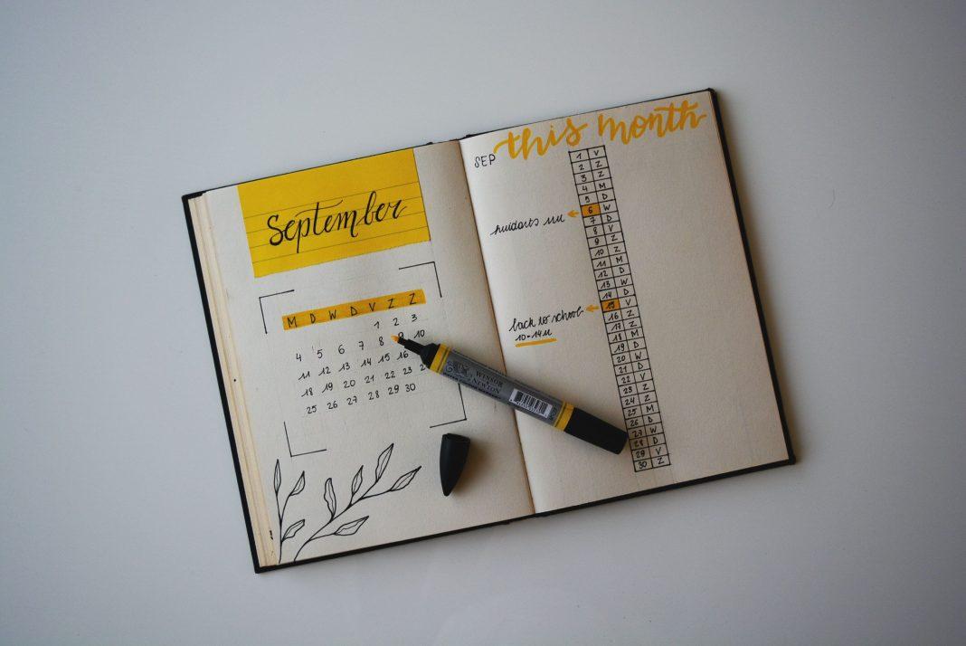 aesthetic journal